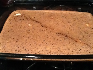 The bars fresh out of the oven. Tasted like a brownie. YUM!