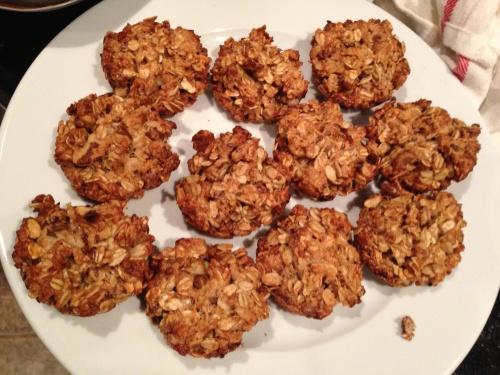 oat cakes final